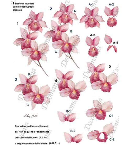 Decomania 3D Paper - Pink Orchid - Cod.3D012