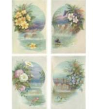 Decoupage Calambour - Rice Paper - Digital Collection - 48X33cms.