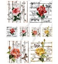 Decomania Transfer Paper - Roses and Script  - Cod TRA031