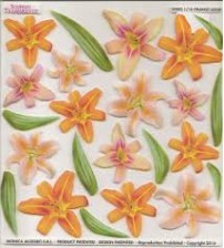 Sospeso Printed Plastic Sheet -Orange Lilium