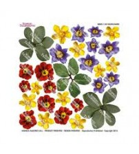Sospeso Printed Plastic Sheet - Wildflowers