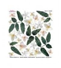 Sospeso Printed Plastic Sheet -Jasmine