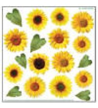 Sospeso Printed Plastic sheet - Sunflower