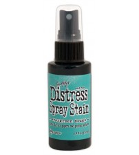 Stain - Distress Spray Stain - Evergreen Bough